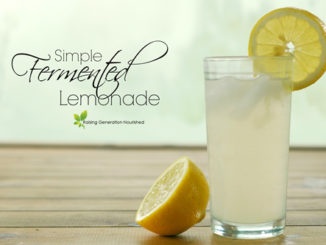 Simple Fermented Lemonade Recipe