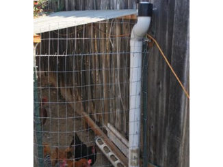 DIY PVC Long Arm Chicken Feeder