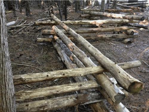 DIY Rail Fence