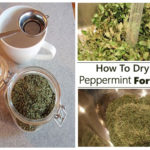 How To Dry Peppermint For Tea