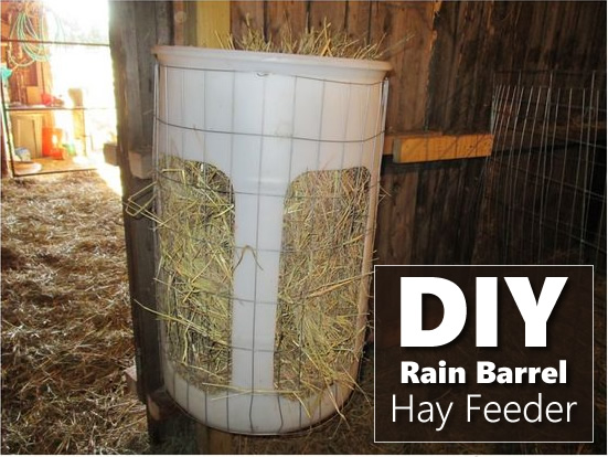 Diy Rain Barrel Hay Feeder